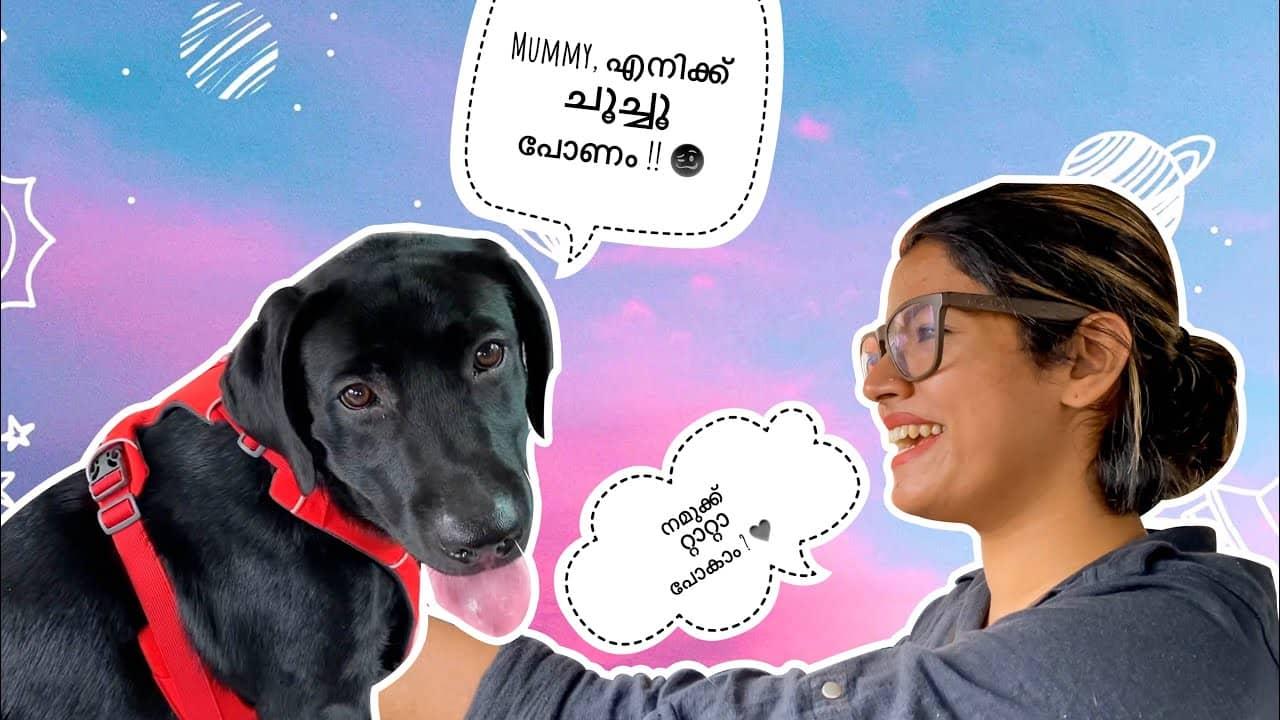 A trip with Bageerah to Varkkala |Ag Vlogs Epi 64 |Amrutha Suresh |Abhirami Suresh |